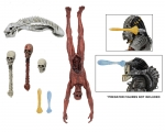 Predator-deluxe accessory pack