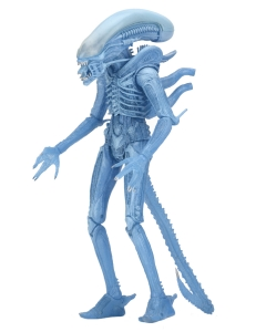 Xenomorph Warrior Aliens